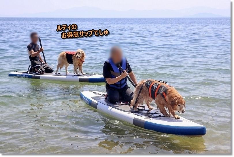 201855-6 琵琶湖_180518_0054