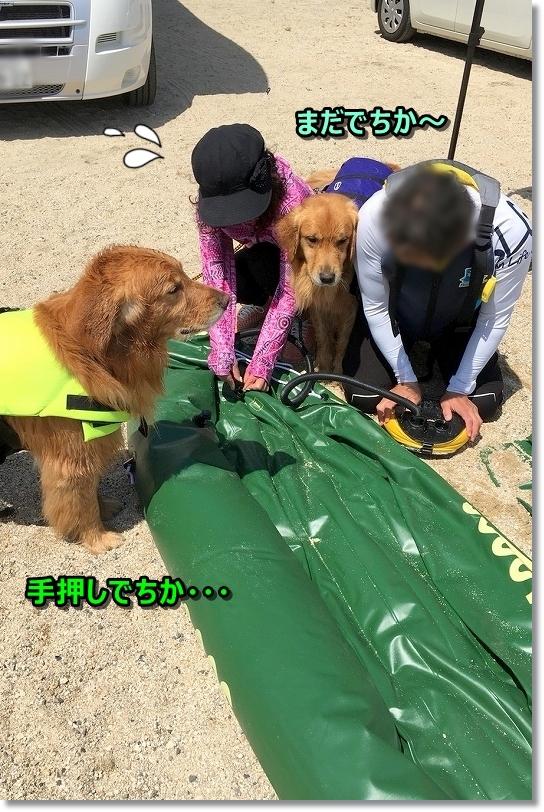 201855-6 琵琶湖_180518_0082