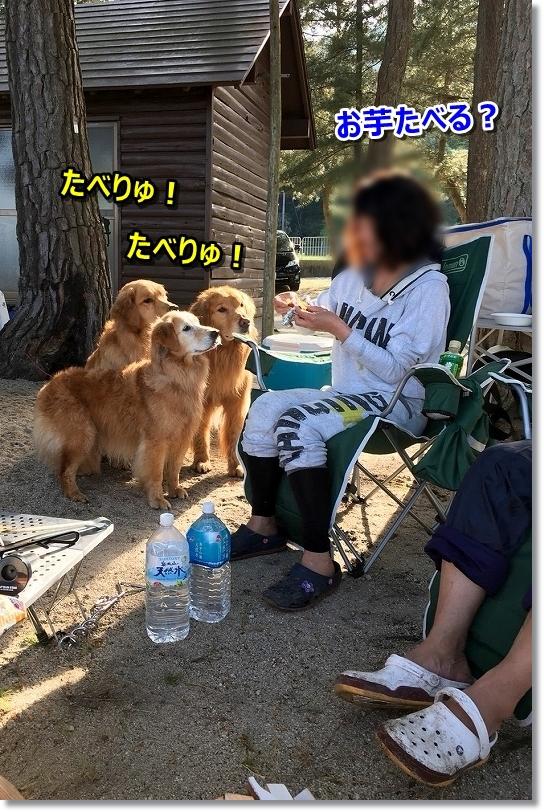 201855-6 琵琶湖_180518_0116