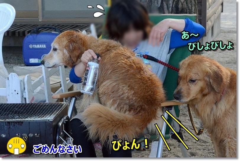 DSC_1689ひょい