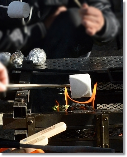DSC_1701焚火でマシュマロ