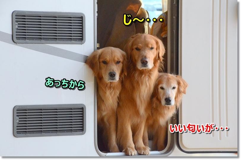 DSC_1794じ~・・・何やらいい匂い