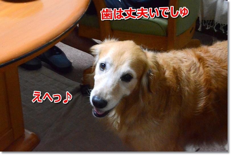 DSC_0263えへへ