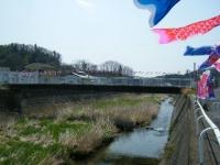 2018-04-20千厩川の鯉のぼり34