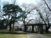 2018-04-19弥あ館山公園09