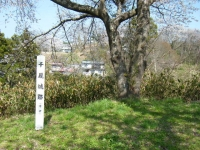 2018-04-19弥あ館山公園06
