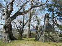 2018-04-19弥あ館山公園16