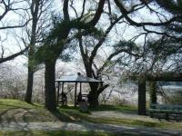 2018-04-19弥あ館山公園11