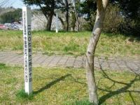 2018-04-19弥あ館山公園24