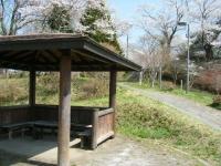 2018-04-19弥あ館山公園33