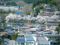2018-04-19弥あ館山公園38