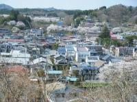 2018-04-19弥あ館山公園36
