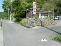 2018-05-15しろぷーうさぎ03