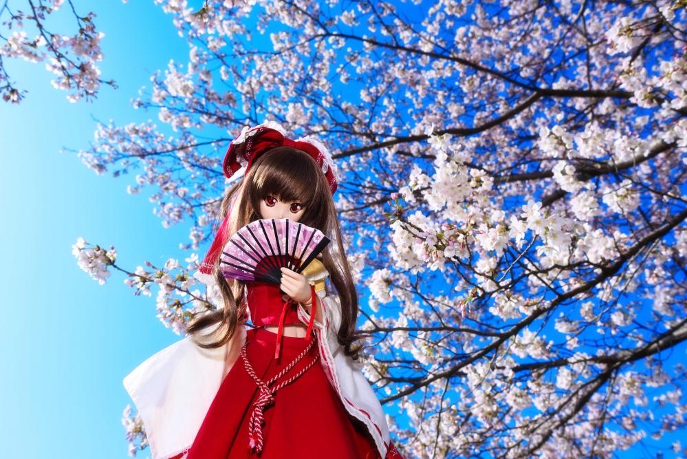 DSC_9093桜