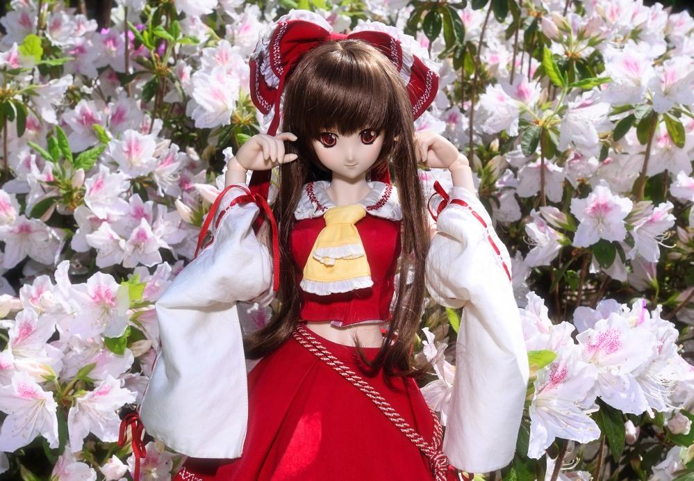 DSC_0602 (3)かいA