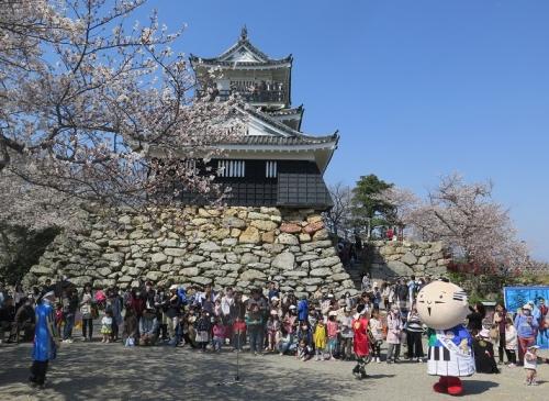 浜松城公園 桜まつり