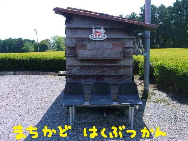 P2250169.jpg