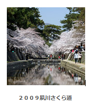 2009夙川さくら道 アルバム
