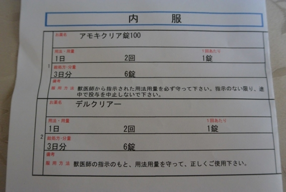 DSC_1987.jpg