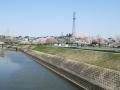 富雄川桜づつみモデル事業公園3