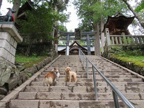 三峯神社階段