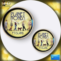 FTISLAND PLANET BONDS◇汎用