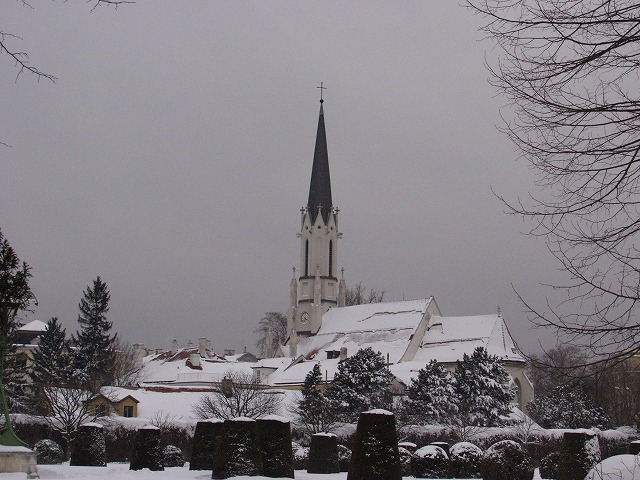 Shoenbrunn 104