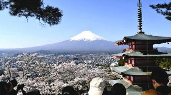 4871-340富士山と桜