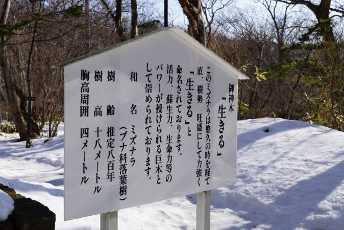 DSC08969温泉神社