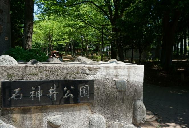DSC02781石神井
