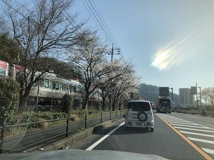 3282018 坂国道桜並木JR呉線S3