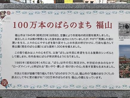 5202018 福山ばら祭ばら公園S12