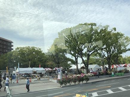 5202018 福山ばら祭ばら公園S17