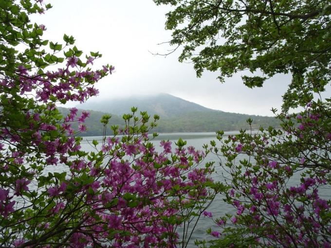 ミツバと地蔵岳