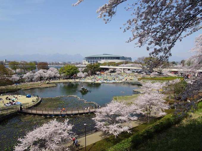 前橋公園1