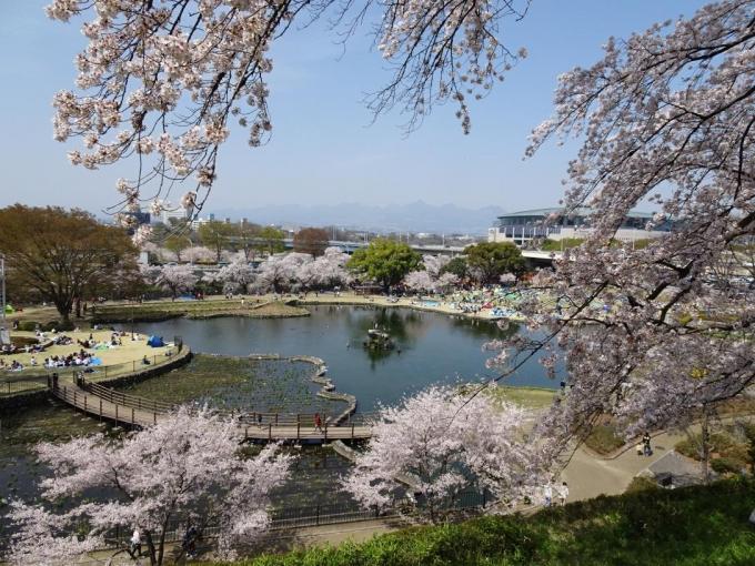 前橋公園2