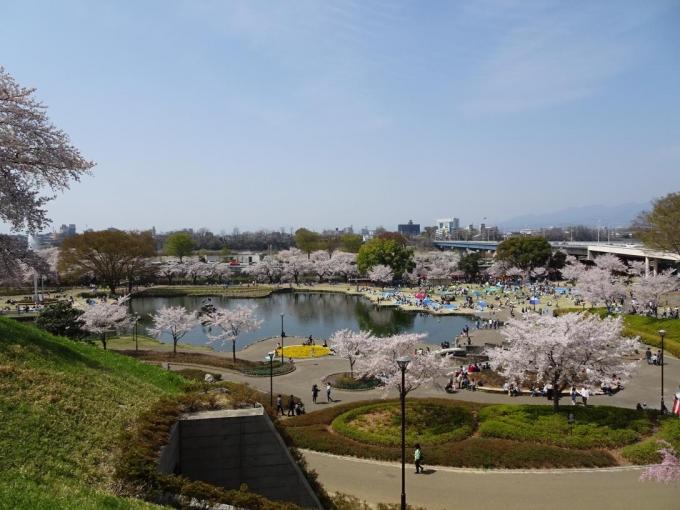 前橋公園3