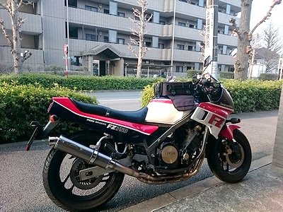 785efhug7 (1)