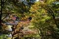 鯖街道資料館と商店街