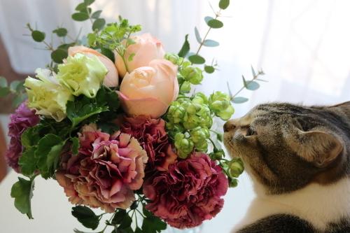 花と女子1