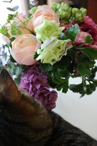 花と女子3