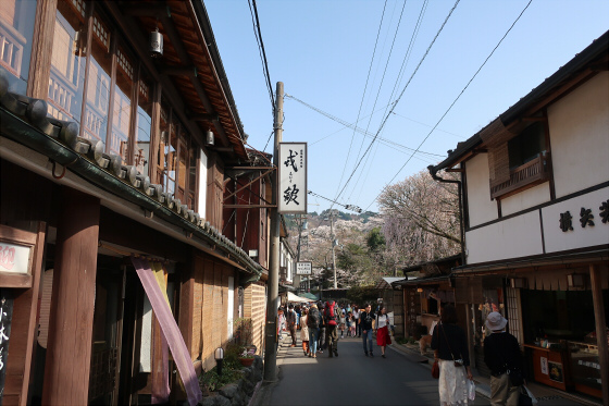 yoshinoyama-2-09