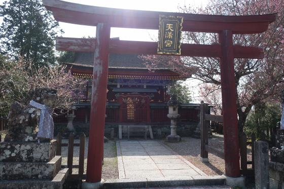 yoshinoyama-2-31