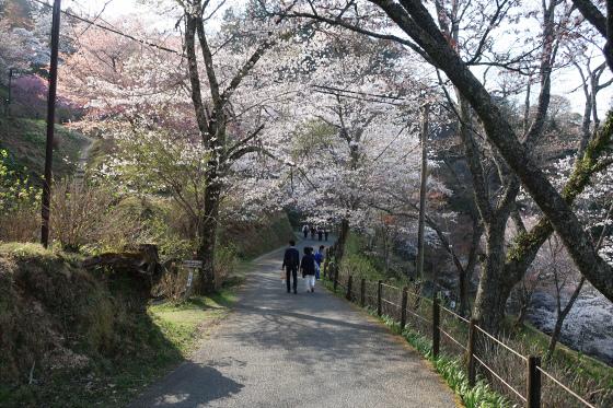 yoshinoyama-3-26