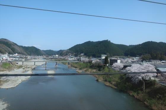 Yoshinoyama-sakura03