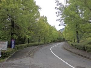 病院への道路1