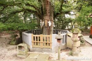 賣布(めふ)神社(松江市和多見町)40