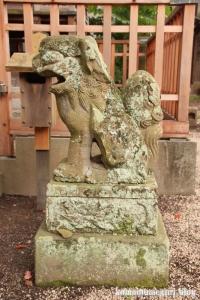 賣布(めふ)神社(松江市和多見町)64