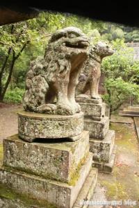 推恵(すいけい)神社(松江市西河津町)9