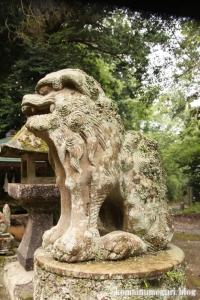 推恵(すいけい)神社(松江市西河津町)11